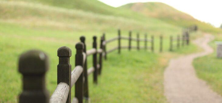 Jaké dřevěné stavby mohou zatraktivnit váš pozemek?